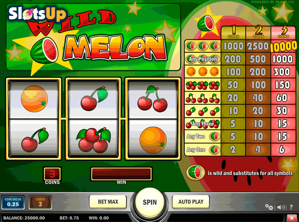 wild melon playn go casino slots