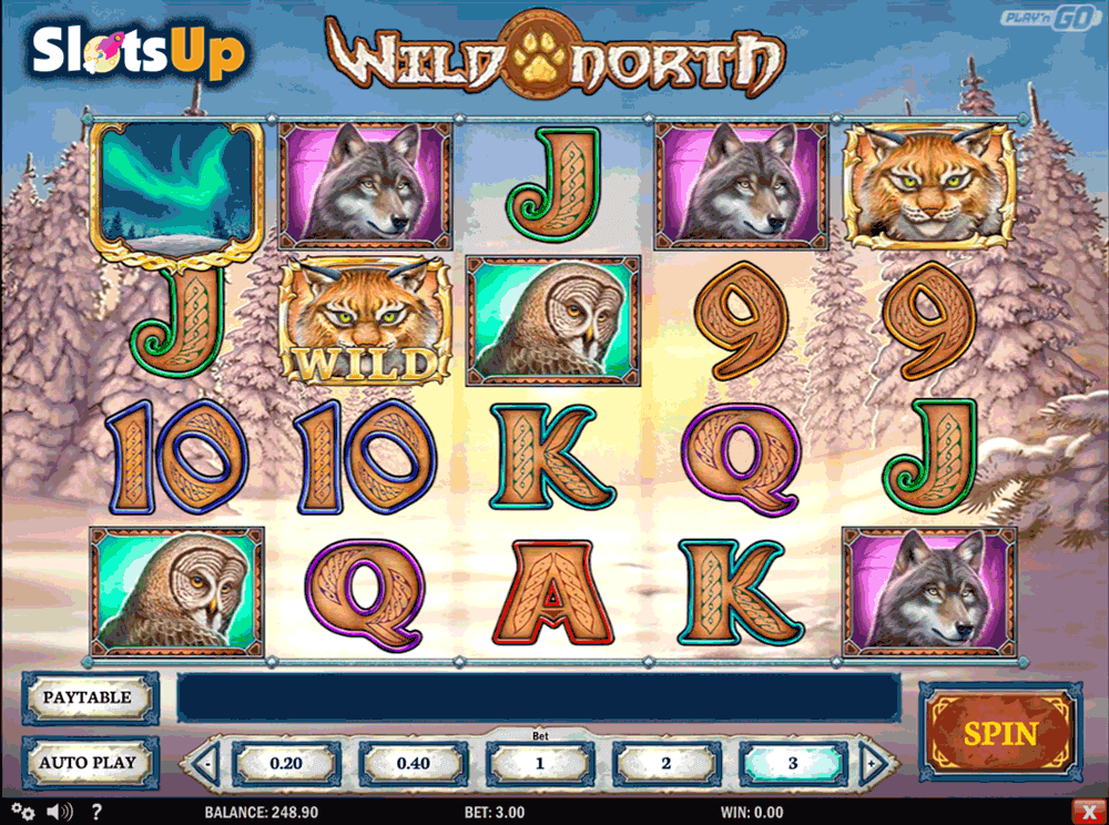 WILD NORTH PLAYN GO CASINO SLOTS