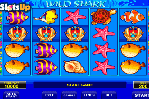 wild shark amatic casino slots