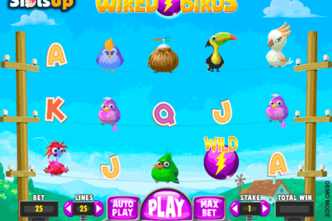 wired birds daub games casino slots