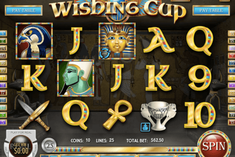 wishing cup rival casino slots 480x320