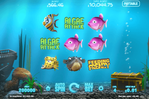 FISH TANK MAGNET GAMING CASINO SLOTS