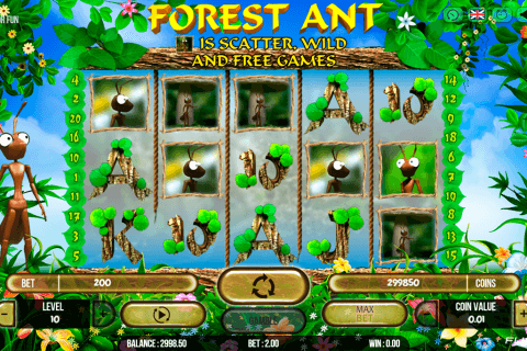 FOREST ANT FUGASO CASINO SLOTS