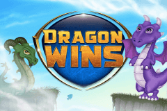 logo dragon wins nextgen gaming slot game