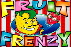 logo fruit frenzy rtg slot game
