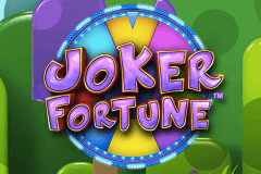 logo joker fortune stake logic slot game