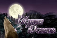 logo night wolves bally wulff slot game