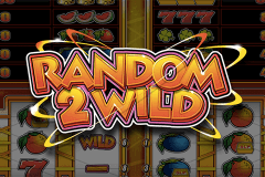logo random 2 wild stake logic slot game