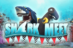 SHARK MEET BOOMING GAMES SLOT GAME
