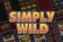 logo simply wild stake logic slot game
