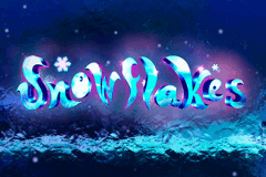 logo snowflakes nextgen gaming slot game