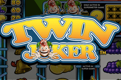 logo twin joker stake logic slot game