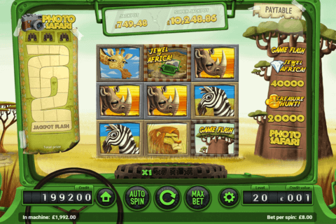 SAFARI MAGNET GAMING CASINO SLOTS