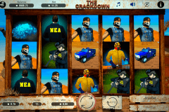 the crackdown booming games casino slots 480x320