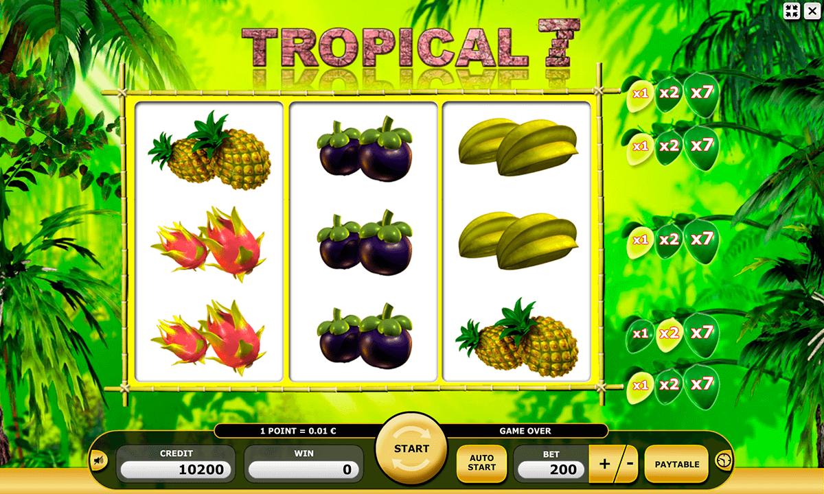 Tropic Reels™ Slot Machine Game to Play Free in Playtechs Online Casinos