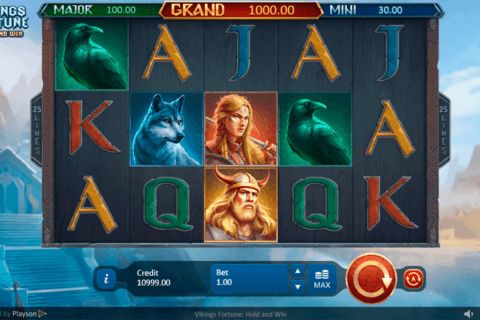 VIKINGS FORTUNE HOLD AND WIN PLAYSON CASINO SLOTS